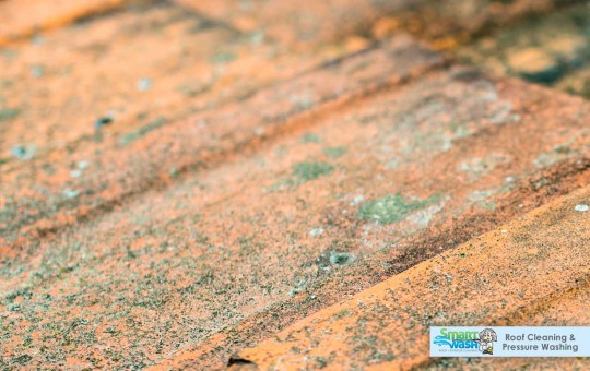 Dirty Streaked Roof - Roof Cleaning Northern Virginia